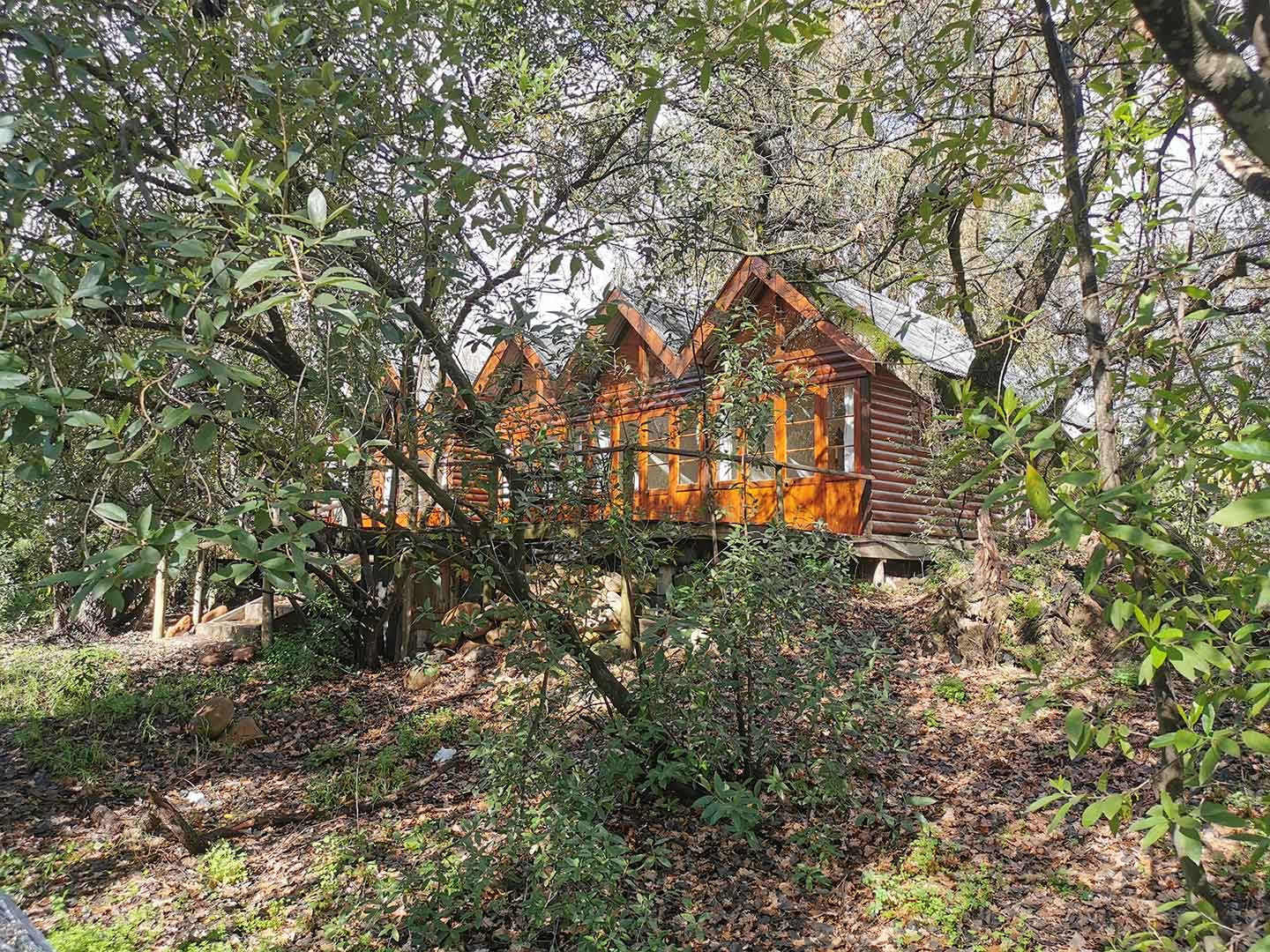 Otter's Bend Lodge - Double And Twin Rooms